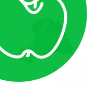Chou Vert (le bouquet)