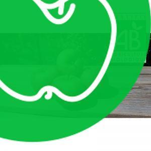 Pomme Elstar BIO (1kg)