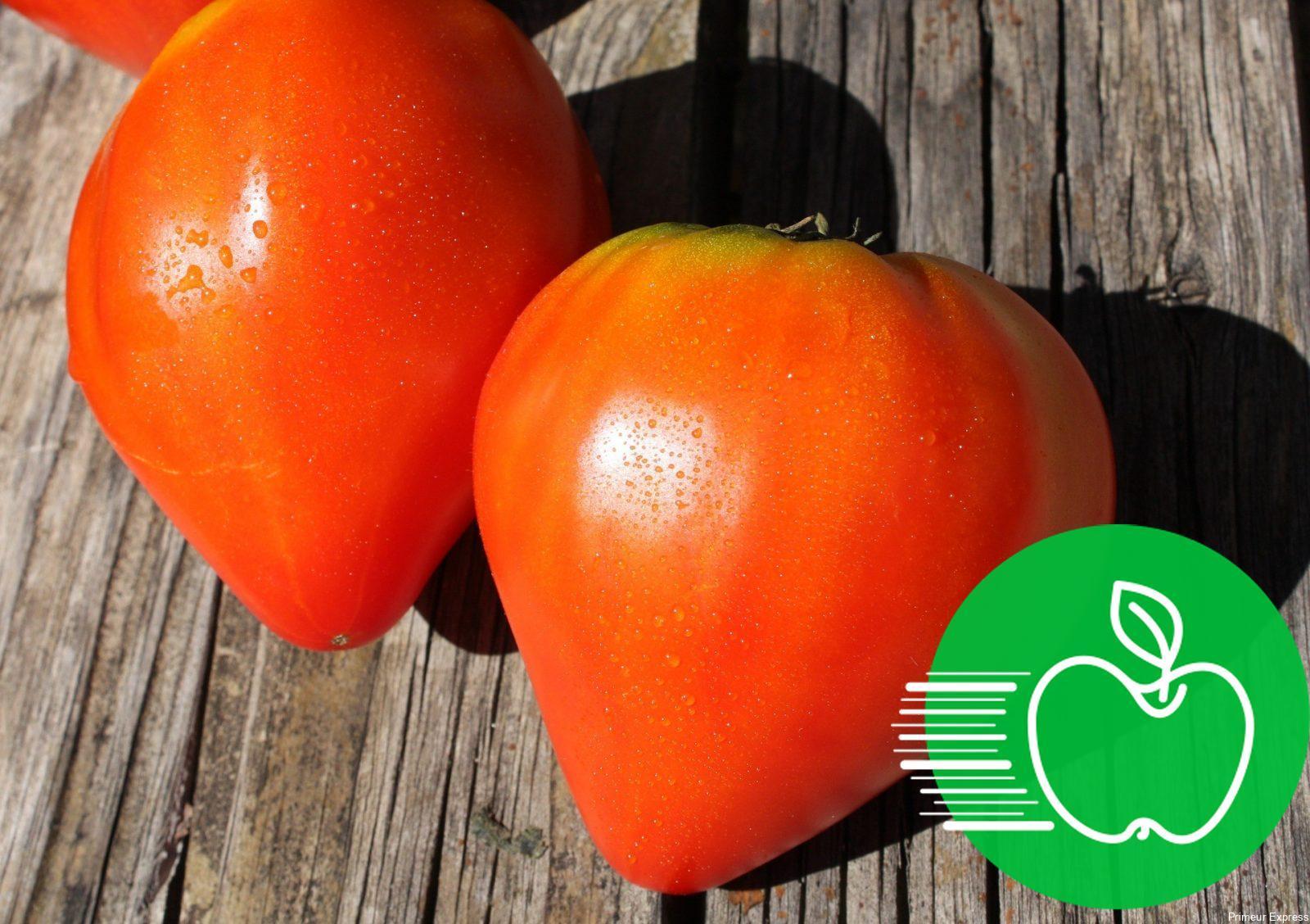 Tomates Coeur de Boeuf (1kg)