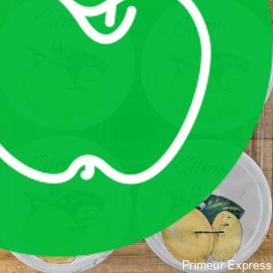 Yaourts Aromatisés au Citron (X4)