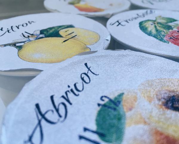Yaourts Aromatisés à l'Abricot (X4)