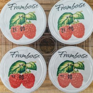 Yaourts Aromatisés à la Framboise (X4)