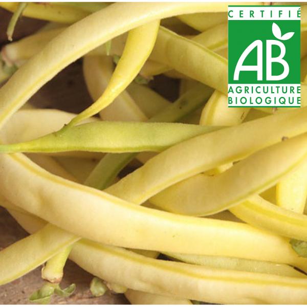 Haricots Beurre BIO (1kg)