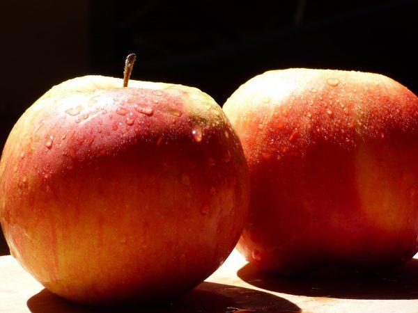 Pomme Rubinette (1kg)