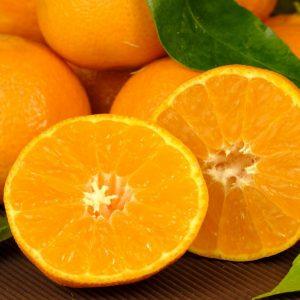 Oranges (1kg)